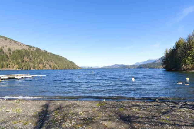 1774 Lindell Avenue, Cultus Lake, BC V2R 4C6 (#R2370048) :: Royal LePage West Real Estate Services