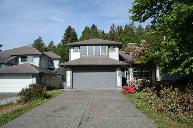 10925 154A Street, Surrey, BC V3R 0X5 (#R2370339) :: Vancouver Real Estate