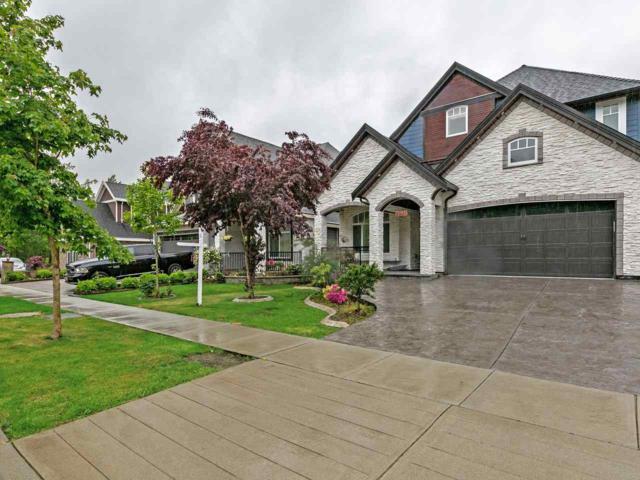 5827 140 Street, Surrey, BC V3X 0G7 (#R2370353) :: Vancouver Real Estate