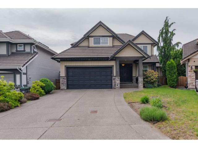 11075 158B Street, Surrey, BC V4N 5E9 (#R2370700) :: Vancouver Real Estate