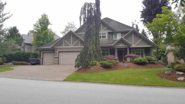 9965 181 Street, Surrey, BC V4N 5B5 (#R2370918) :: Vancouver Real Estate