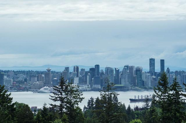 121 W 29TH Street #510, North Vancouver, BC V7N 4L6 (#R2370941) :: Vancouver Real Estate