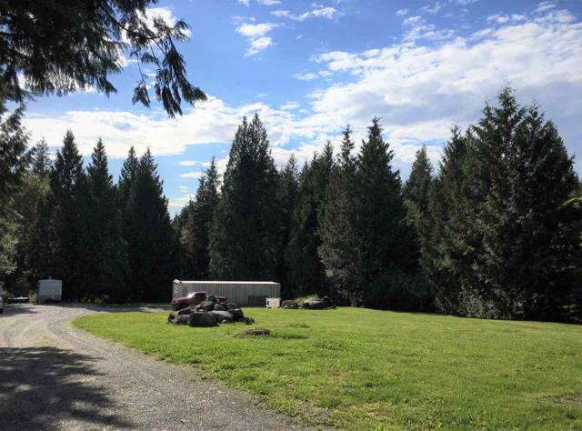 12139 269 Street, Maple Ridge, BC V2W 1N8 (#R2372128) :: Vancouver Real Estate