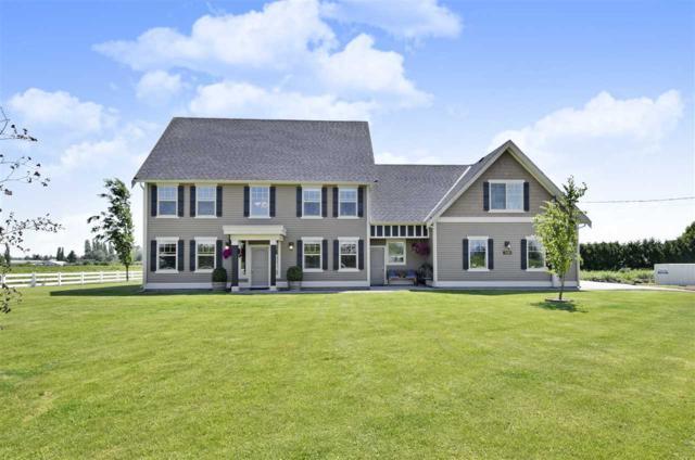 5206 164 Street, Surrey, BC V3Z 1E2 (#R2373138) :: Royal LePage West Real Estate Services