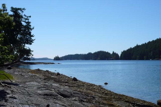 135 Kingfisher Lane, Salt Spring Island, BC V8K 1S5 (#R2373243) :: Vancouver Real Estate