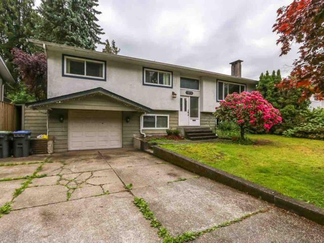 3024 Larch Way, Port Coquitlam, BC V3B 3K9 (#R2373305) :: Royal LePage West Real Estate Services
