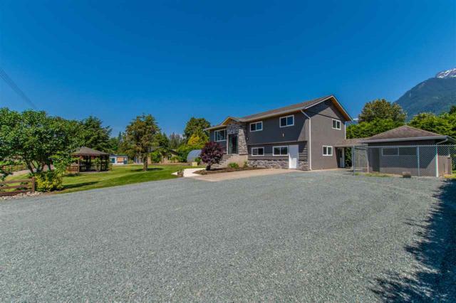 52464 Yale Road, Rosedale, BC V0X 1X1 (#R2374726) :: Royal LePage West Real Estate Services