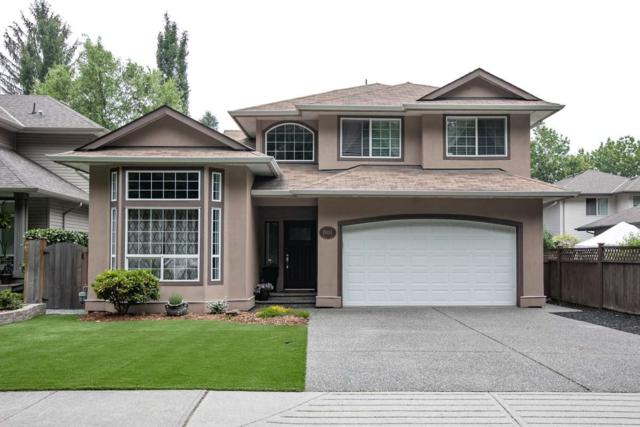 19111 Advent Road, Pitt Meadows, BC V3Y 2C4 (#R2375304) :: Royal LePage West Real Estate Services