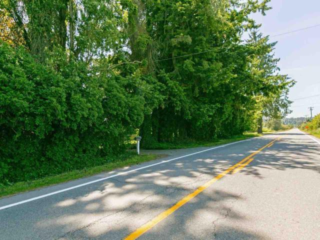 1184 184 Street, Surrey, BC V3Z 9R9 (#R2375754) :: Royal LePage West Real Estate Services