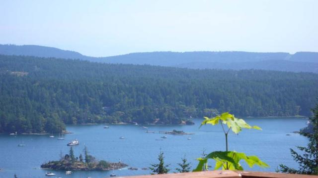 261 Cudmore Road, Salt Spring Island, BC V8K 2J7 (#R2376618) :: Vancouver Real Estate