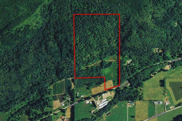LOT B Iverson Road, Columbia Valley, BC V2R 4X5 (#R2376837) :: Royal LePage West Real Estate Services