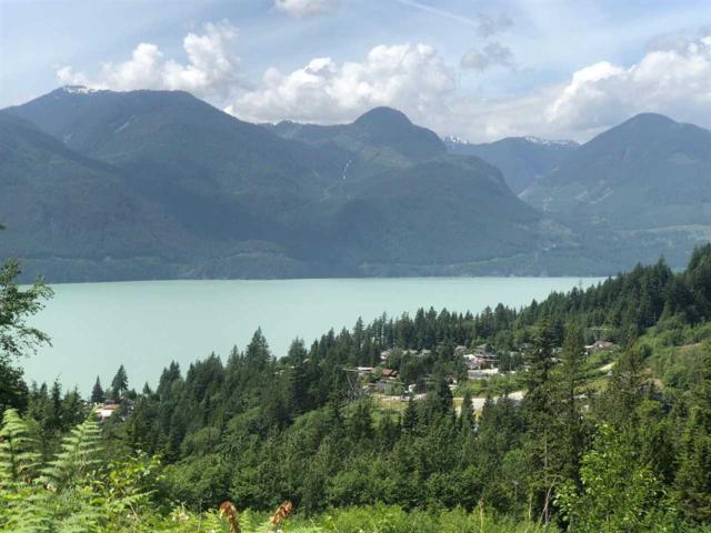 1121 Copper Drive, Squamish, BC V0N 1J0 (#R2376852) :: Royal LePage West Real Estate Services
