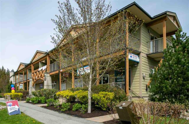 1411 Portage Road #203, Pemberton, BC V0N 2L1 (#R2378273) :: Royal LePage West Real Estate Services