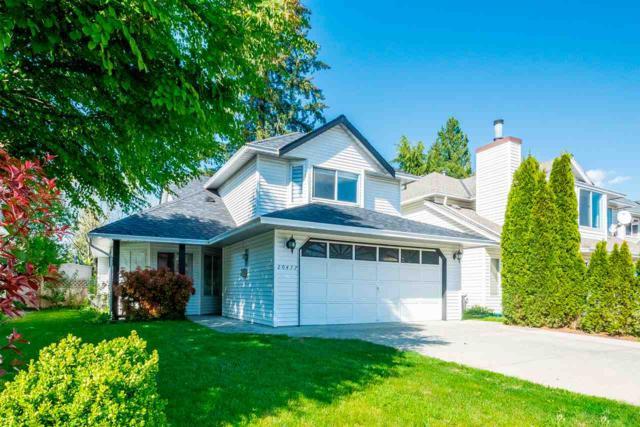 20477 115A Avenue, Maple Ridge, BC V2X 9Z4 (#R2378847) :: Royal LePage West Real Estate Services