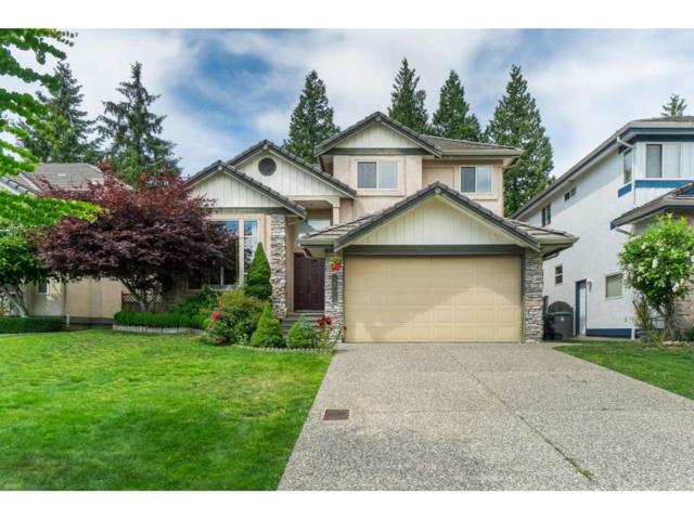 16071 111 Avenue, Surrey, BC V4N 4R5 (#R2378873) :: RE/MAX City Realty