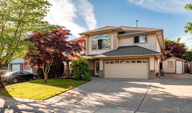 23955 118A Avenue, Maple Ridge, BC V4R 2E6 (#R2379026) :: RE/MAX City Realty