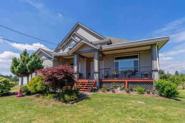21329 96 Avenue, Langley, BC V1M 2Z5 (#R2379030) :: Premiere Property Marketing Team