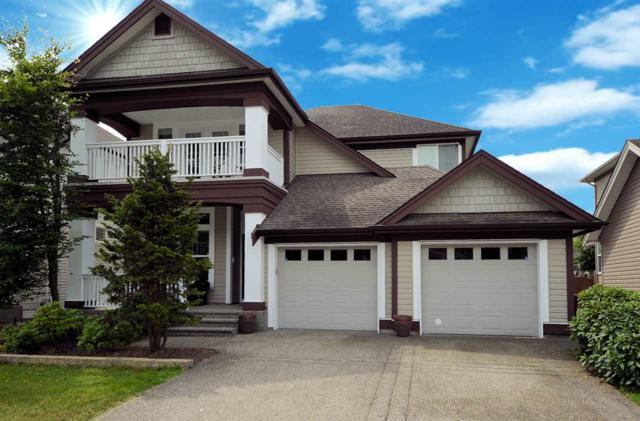 19454 Sutton Avenue, Pitt Meadows, BC V3Y 0B2 (#R2379186) :: Royal LePage West Real Estate Services