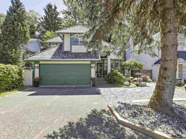 2994 Walton Avenue, Coquitlam, BC V3B 6V6 (#R2379194) :: Royal LePage West Real Estate Services