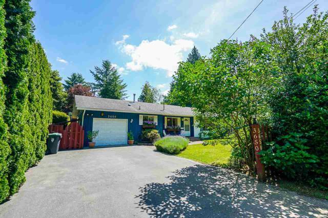 3650 204 Street, Langley, BC V3A 1X2 (#R2379280) :: Premiere Property Marketing Team