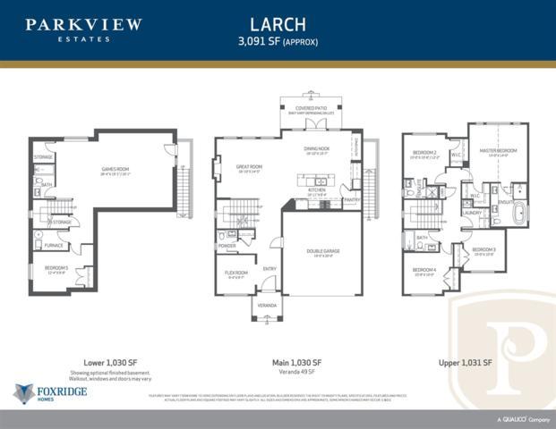 16631 103A Avenue, Surrey, BC N0N 0N0 (#R2379392) :: Premiere Property Marketing Team
