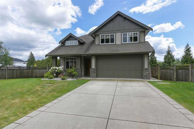 10304 164A Street, Surrey, BC V4N 5M4 (#R2379536) :: Premiere Property Marketing Team
