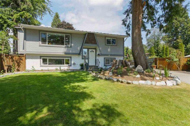 21043 121 Avenue, Maple Ridge, BC V2X 8K1 (#R2379574) :: Royal LePage West Real Estate Services
