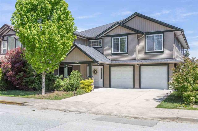 11346 236 Street, Maple Ridge, BC V2W 1Y4 (#R2379741) :: RE/MAX City Realty