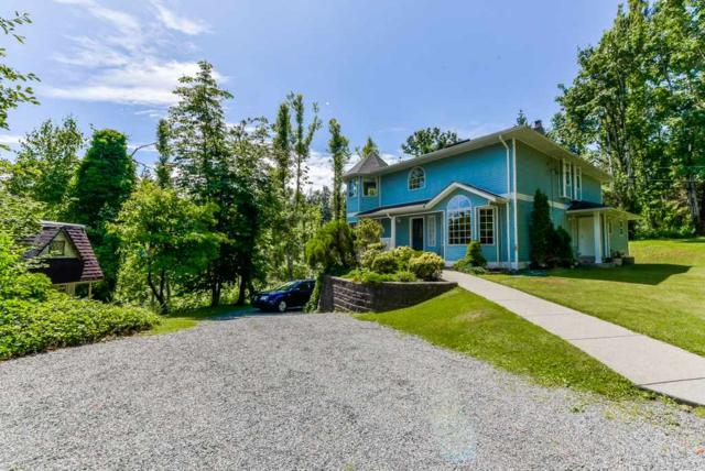 29688 Camelot Avenue, Abbotsford, BC V4X 2E5 (#R2379821) :: Royal LePage West Real Estate Services