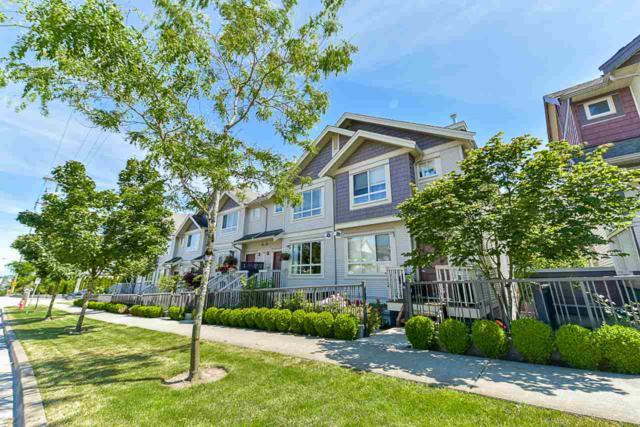 19560 68 Avenue #49, Surrey, BC V4N 5Y5 (#R2379876) :: RE/MAX City Realty