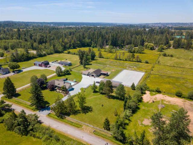 6149 228 Street, Langley, BC V2Y 2L3 (#R2379891) :: Royal LePage West Real Estate Services