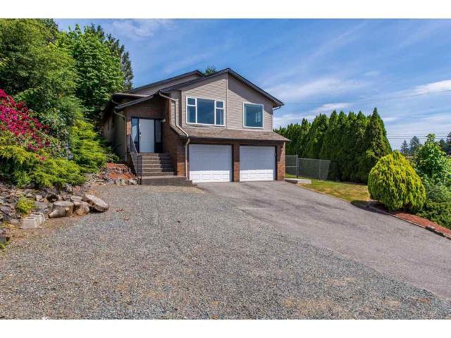 47600 Mountain Park Drive, Chilliwack, BC V2P 7P6 (#R2380220) :: Vancouver Real Estate