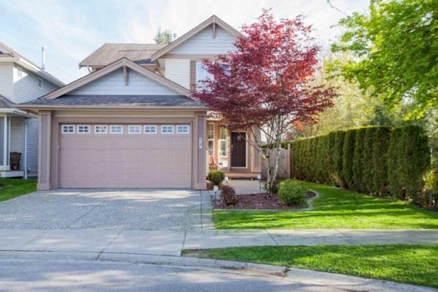 21140 81B Avenue, Langley, BC V2Y 0B6 (#R2380280) :: Premiere Property Marketing Team
