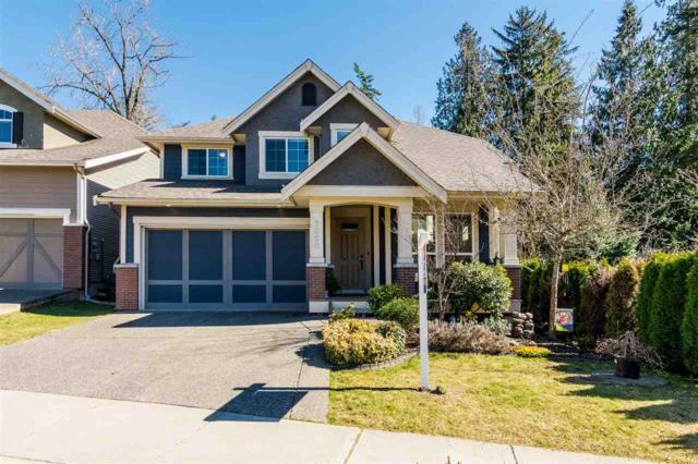 7050 208A Street, Langley, BC V2Y 0J2 (#R2380288) :: Premiere Property Marketing Team