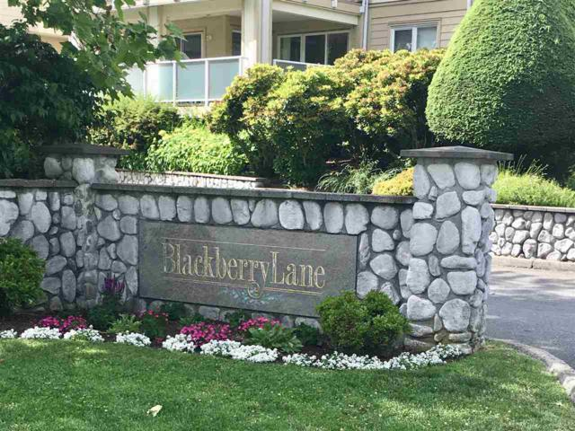 20125 55A Avenue #309, Langley, BC V3A 8L6 (#R2380293) :: Royal LePage West Real Estate Services