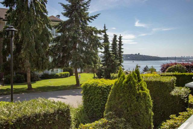 3608 Deercrest Drive #205, North Vancouver, BC V7G 2S8 (#R2380342) :: RE/MAX City Realty