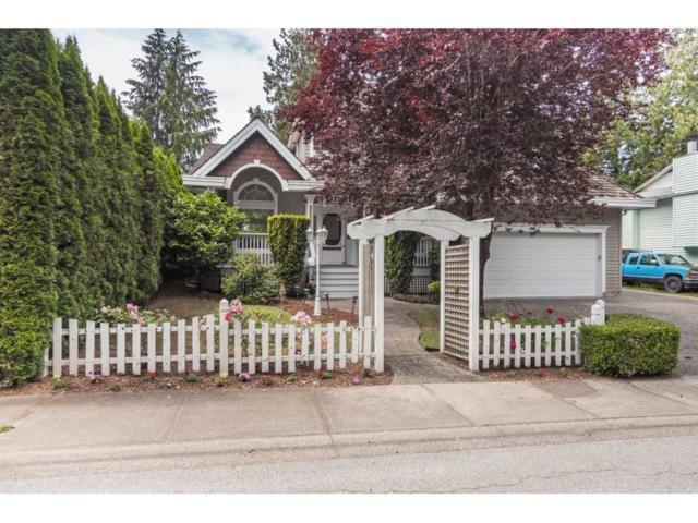 4451 212 Street, Langley, BC V3A 7Z8 (#R2380556) :: Premiere Property Marketing Team