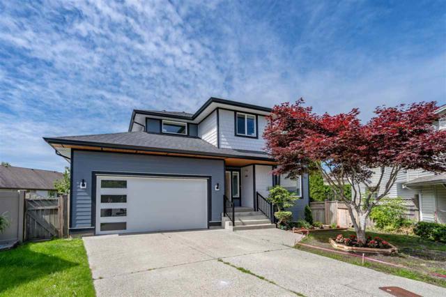 20126 121A Avenue, Maple Ridge, BC V2X 3J8 (#R2380624) :: Royal LePage West Real Estate Services