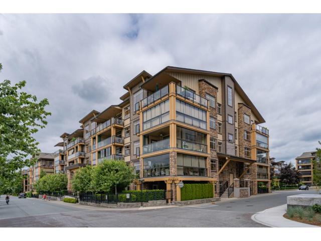 8258 207A Street #111, Langley, BC V2Y 0N3 (#R2380858) :: Royal LePage West Real Estate Services