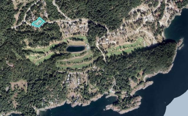 1000 Cowan Point Drive, Bowen Island, BC V0N 1G2 (#R2380862) :: Royal LePage West Real Estate Services