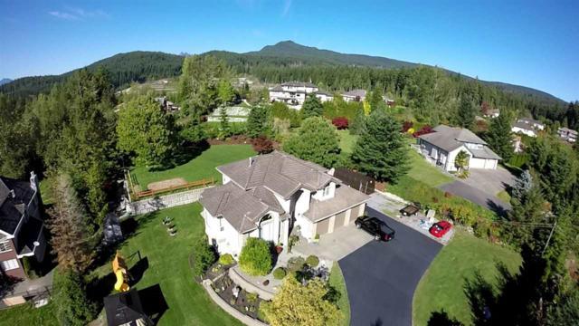 26299 127 Avenue, Maple Ridge, BC V2W 1C6 (#R2380869) :: Vancouver Real Estate