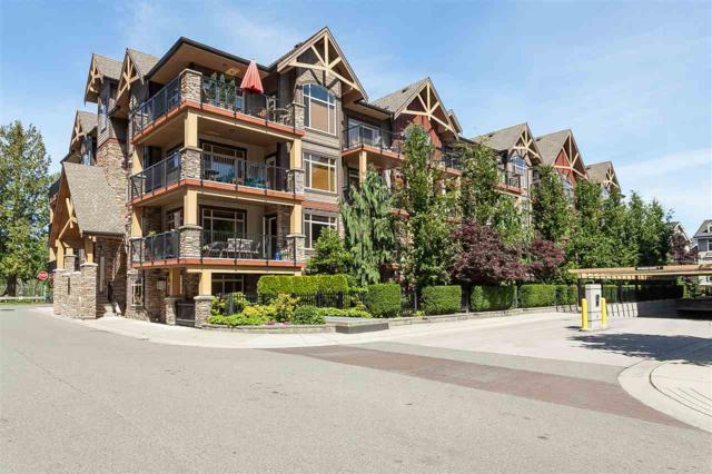 8328 207A Avenue #211, Langley, BC V2Y 0K5 (#R2381153) :: Royal LePage West Real Estate Services