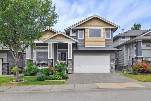 21667 90B Avenue, Langley, BC V1M 4C8 (#R2381439) :: Royal LePage West Real Estate Services