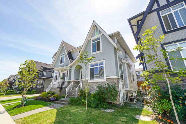 20928 80A Avenue, Langley, BC V2Y 0R3 (#R2381496) :: Royal LePage West Real Estate Services