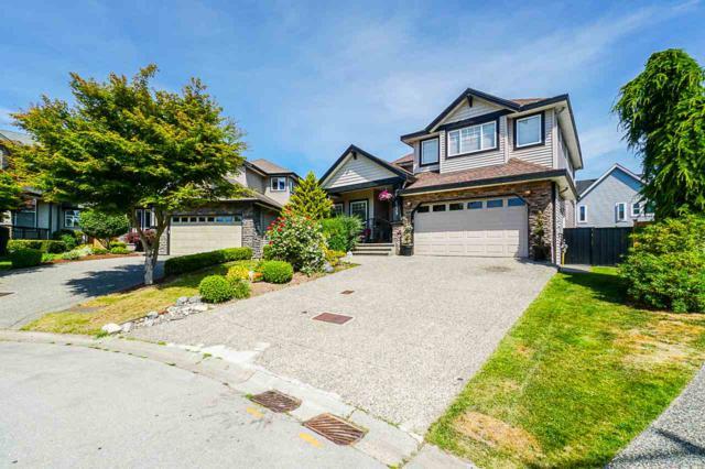 6239 165 Street, Surrey, BC V3S 0Y6 (#R2381641) :: Royal LePage West Real Estate Services