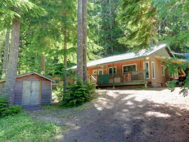 15001 Root Roundabout Road, Sunshine Valley, BC V0X 1L5 (#R2381682) :: Vancouver Real Estate
