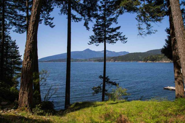 Lot 11 Sunset Estate, Gambier Island, BC  (#R2381940) :: RE/MAX City Realty