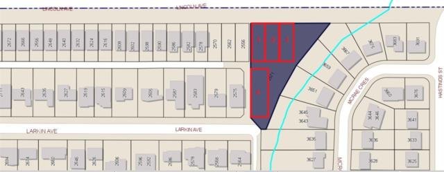 2571 Larkin Avenue, Port Coquitlam, BC V3B 2H8 (#R2382848) :: Vancouver Real Estate
