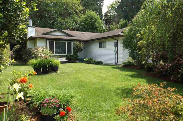 11894 249 Street, Maple Ridge, BC V4R 1Z4 (#R2384566) :: Vancouver Real Estate