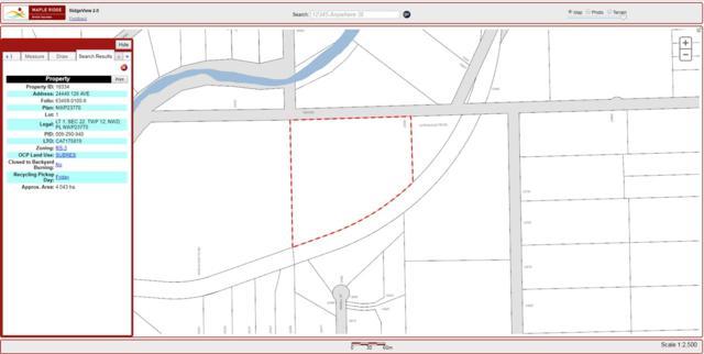 24440 128 Avenue, Maple Ridge, BC V0V 0V0 (#R2384715) :: Vancouver Real Estate